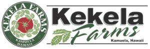 KF-header2