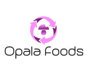 Opala Foods_LOGO