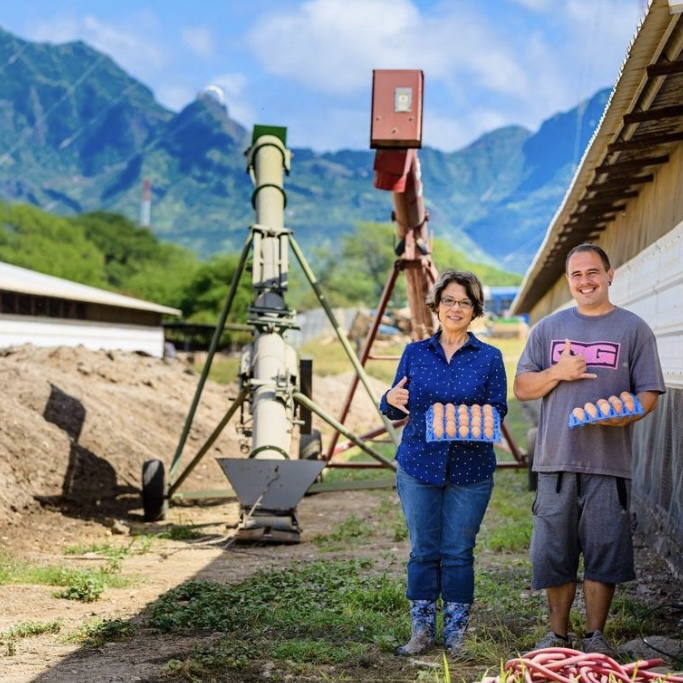 Featured Producer: Eggs Hawaii